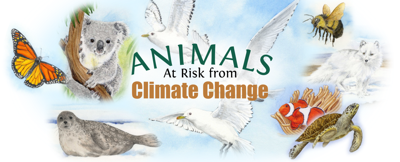 Animals at Risk from Climate Change - Animals At Risk from