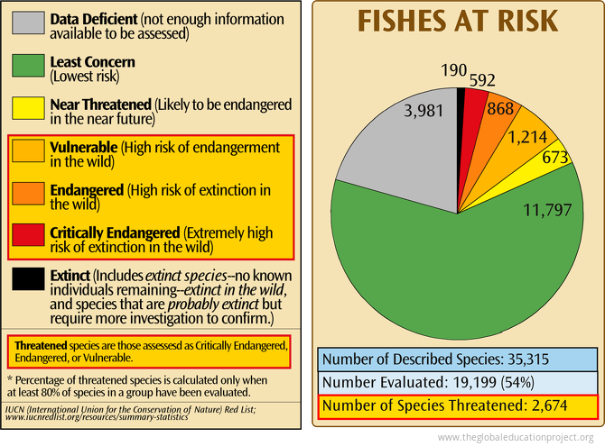 Fishes at Risk of Extinction